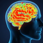 8 alimentos que podem melhorar sua memória e aumentar sua inteligência