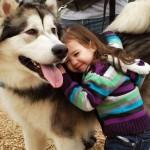 Molécula pode ser a explicação do por que o cão é o melhor amigo do homem