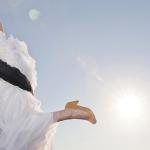 Festa de casamento: Será que devo convidar meu chefe?