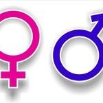 UNESCO lança publicação dedicada a educação sexual brasileira